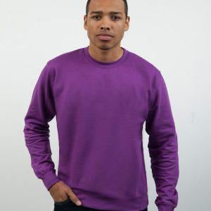 Standard Weight Sweatshirts