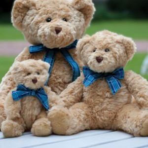 Mumbles Bracken Bear,Positive Branding